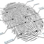 French Police Use Integrated Biometrics Scanners to Identify Disaster Victims
